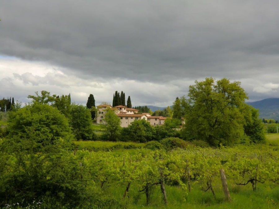 2 Villa Eletto - Loppiano - Firenze