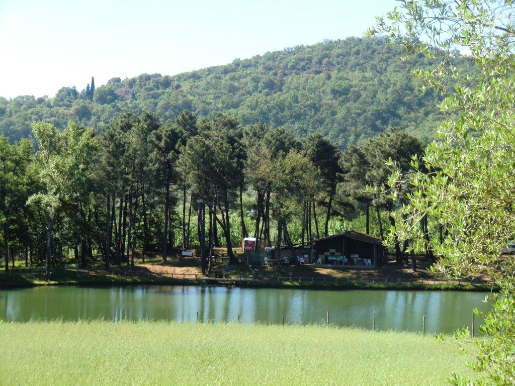 Il laghetto di Loppiano