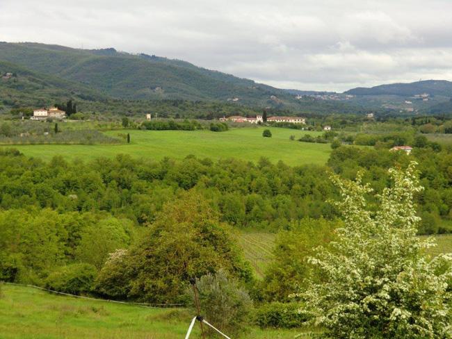 Campagna di Loppiano, sullo sfondo la fattoria Tracolle