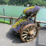 carro con fiori