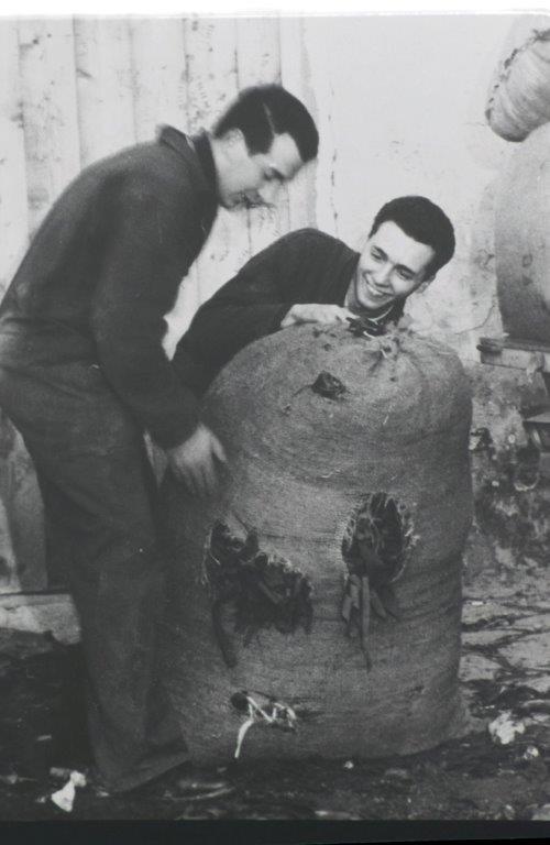 Aurelio Lagorio con l'amico Mauro Fassone alle prese con una balla di stacci